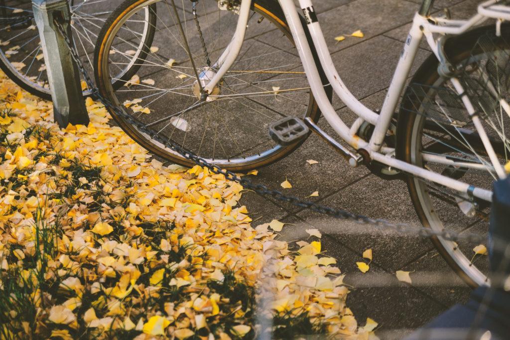 自転車に乗るということ、命を守るということの話