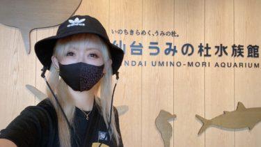 ひとり旅日誌「雨の日の仙台散歩と巨大てるてる」